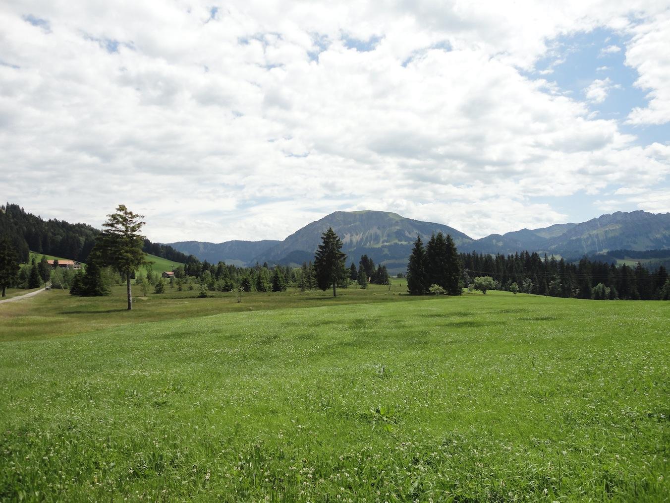 Torfmoor im Entlebuch