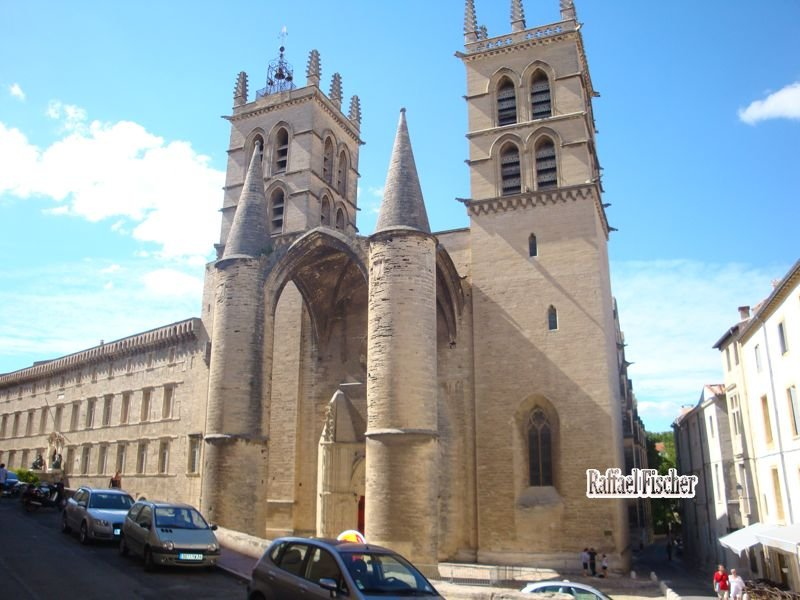 29 Cathedrale