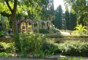 36 Jardin de plantes